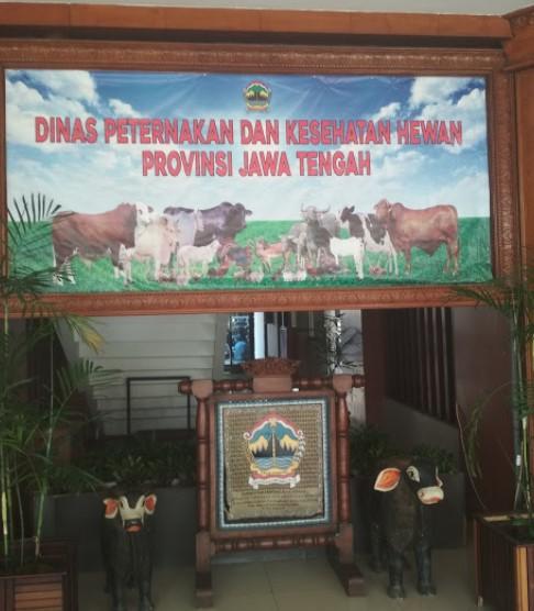 dinas-peternakan-dan-kesehatan-hewan-provinsi-jawa-tengah
